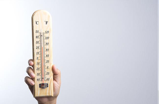 Et trætermometer holdes i vejret